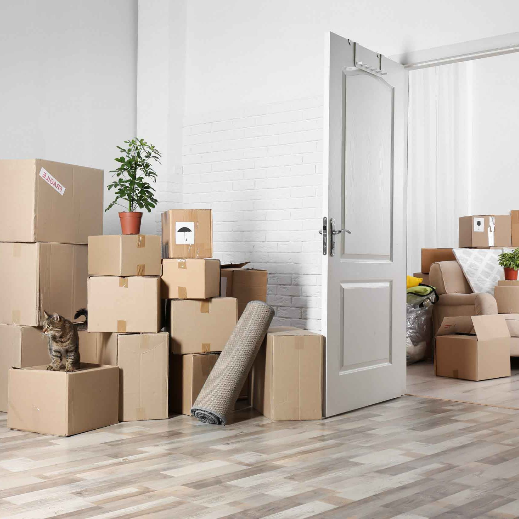 home movers Houston